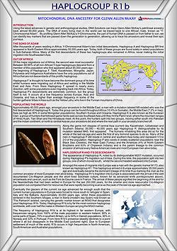 DNA Ancestors - Order a DNA Test  1800 000 362  Maternal DNA