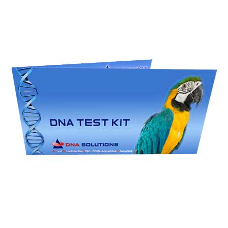Bird DNA Test Australia